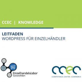 Leitfaden: Erstellung einer Website mit Wordpress